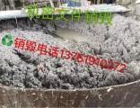 长宁区纸质材料销毁长宁区一次达到10吨资料档案销毁可以免费