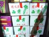 郑州蔬菜箱无公害