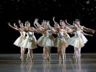 下渡路附近哪里有芭蕾舞一对一培训