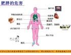 中国减肥较公司