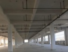 大沙工业区 仓库 3000平米