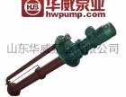 山东华威熔盐泵 熔盐液下泵 高温熔盐泵 GY50-250