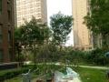 植物园附近万和城简装修93平带简单家具家电1000每月