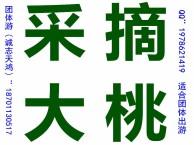 平谷京东大峡谷+京东大溶洞+自助烧烤二日游 公司采摘大桃报价