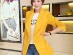 长袖毛呢大衣修身中长款薄外套一粒扣2014秋装新款韩版大码女装