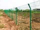 绿色双边护栏网 湘潭绿色双边护栏网 绿色双边护栏网厂家