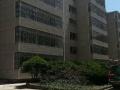 开发区明珠广场附近精装三室出租、可拎包入住!