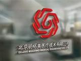 通州logo設計 通州龍楠標志設計公司 VI設計