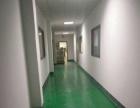大王山标准二楼1350平带装修厂房招租
