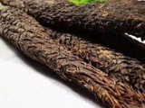 温州肉苁蓉价格多少钱一斤,产地货源直销