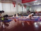 少儿舞蹈培训-青少年形体训练-成人古典舞培训