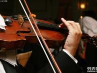 普陀区嘉定区名师辅导 小提琴培训