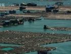 霞浦沙滩、滩涂摄影9月3-4号行程还有余位尽快联系
