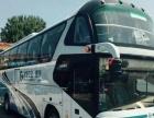 30-55座中通,金龙等50辆大巴对外出租