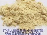 黄豆粉全脂大豆蛋白膨化麻辣食品原料