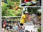 深圳龙华周边有名的农家乐一日游推荐松湖生态园