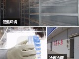 JNPZ-005低温牛皮液氮手套防冻手套超低温防护手套
