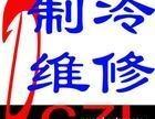 上海浦东区张江海鲜鱼缸制冷维修 冷库维修保养