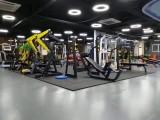 德州厂家批发健身房综合健身器材
