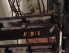 服务器维护 RAID组建与重组