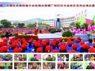 汕尾海丰陆丰陆河婚庆礼仪文化演艺演出活动策划红太阳公司