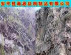 热销产品菱形钢丝绳网 边坡防护网 柔性防护网 现货