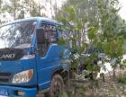出售蓝牌自卸货车