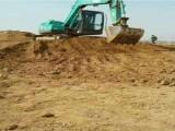 河北保定挖掘机钩机挖沟机培训学校 学开钩机个学校