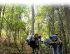 野花沟露营活动、春游踏青、野外烧烤、户外拓展活动