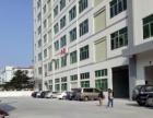 虎门新联新推出1200平方米带地坪漆一楼厂房招租