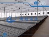 潮汐式移动苗床-充分利用温室面积 节约水肥成本