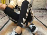 速卖通爆款印花字母打底裤 纯棉瑜伽运动裤