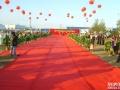 上海地毯租赁红黑白蓝 地毯租赁 各种地毯租赁