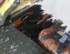 郑州修补汽车玻璃的地址