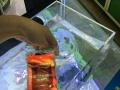 创业找膜法世界手机防水好创业找膜项目加盟 娱乐场所