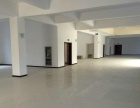 出租新洋经济区3000平方生产办公楼