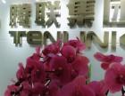香港一级代理 一手低价办理香港公司业务