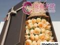 七夕情人节鲜花配送红玫瑰 进口高档花束