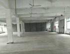 平湖经济开发区,独栋标准厂房出租,一到两层3500