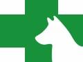 佳雯宠物医院-宠物注射麻醉和吸入麻醉的区别