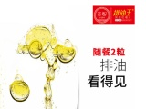 吉智排油王-网络创业-怕油腻嚼2粒-广州