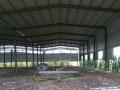 阜合产业园 厂房 2000平米