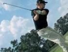 快速入门高尔夫 高尔夫球职业教练一对一高尔夫球课程学习