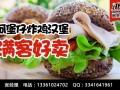 阿堡仔汉堡炸鸡加盟/汉堡连锁加盟多少钱