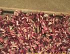 野生红菇,红菌