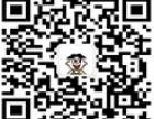 烟台审时网络网站运营推广 SEO优化