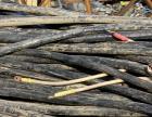 蚌埠专一电缆线回收公司蚌埠电缆线价格