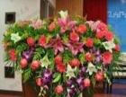 鲜花速递鲜花礼仪大型会场布置 鲜花绿植租摆