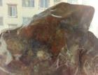 西藏昌都类乌齐藏瓷红玉石