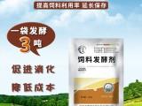 甜菜渣发酵饲料喂羊就用农富康饲料发酵剂效果好